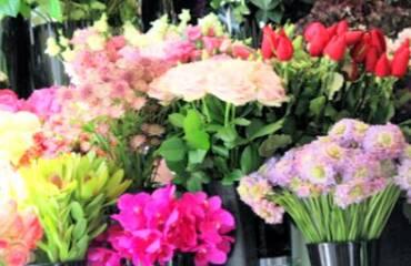 パリのお花屋さん散策3